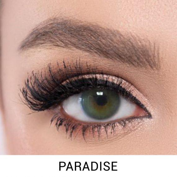 El Amore Paradise Lens 6 Aylık